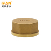Brass Female Plug